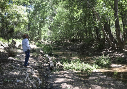 Steve Brown, board member of Save the Scenic Santa Ritas, walks along Cienega Creek on April 24, 2019.