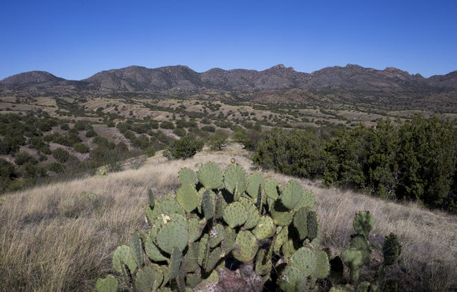 Rosemont Mine is proposed to be built in the Santa Rita Mountains about 30 miles southeast of Tucson.