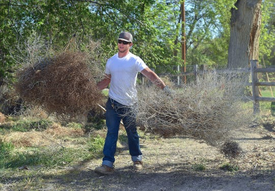 Cooper Henderson carries out brush at Ponderosa Park.