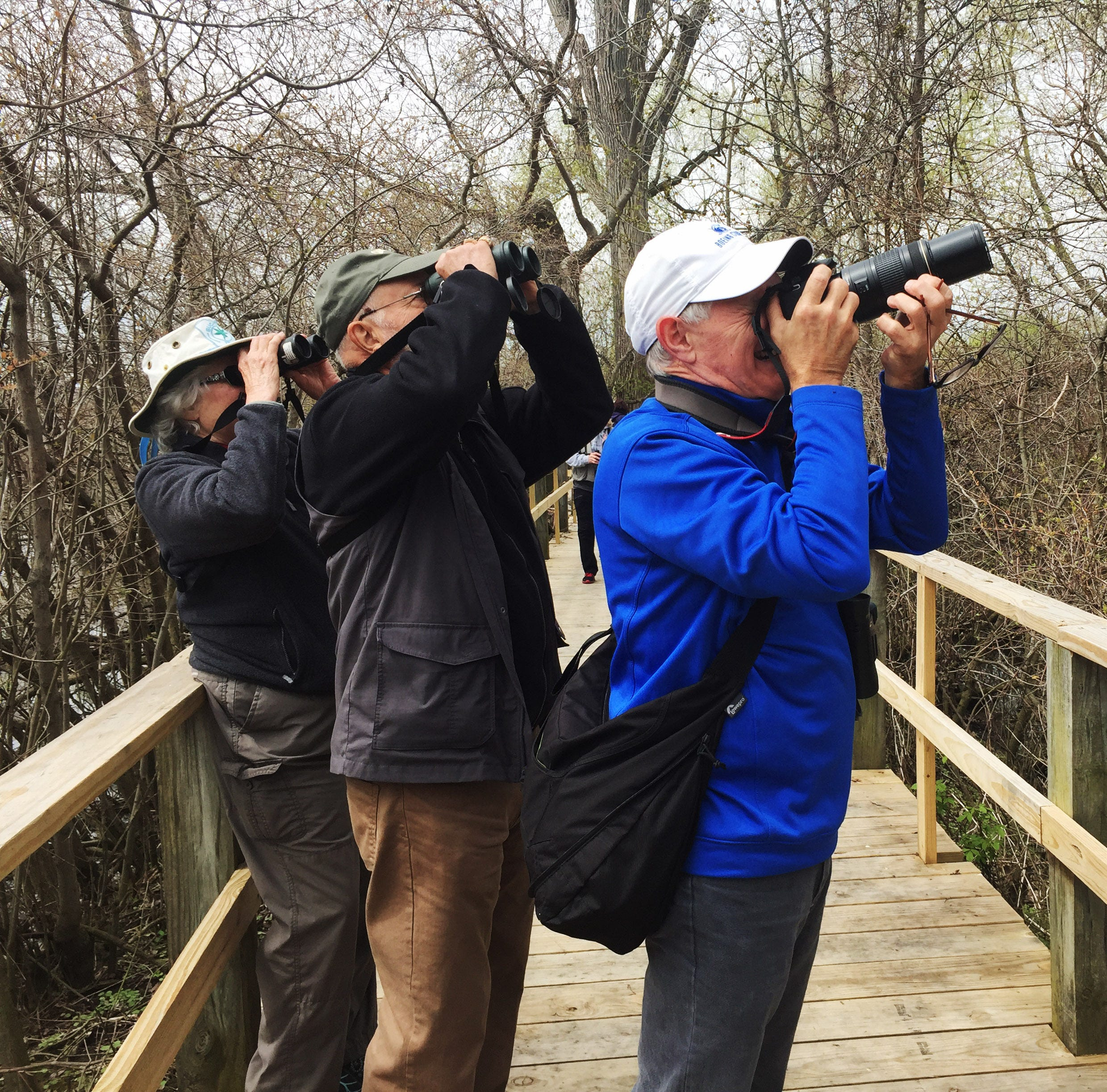 Biggest Week in American Birding kicks off Friday