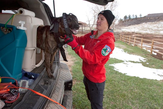 Larimer County Search and Rescue team member, Mary Babbitt, prepares her dog, Jupiter, for a training event held at Lory State Park on Saturday, April 13, 2019. Jupiter is trained to follow the trial of scent particles shed by missing persons.