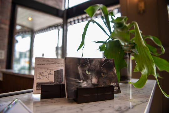A postcard image of Oreo, resident cat, is displayed on the front counter of the recently renovated Armstrong Hotel on Monday, April 29, 2019, in Fort Collins, Colo.