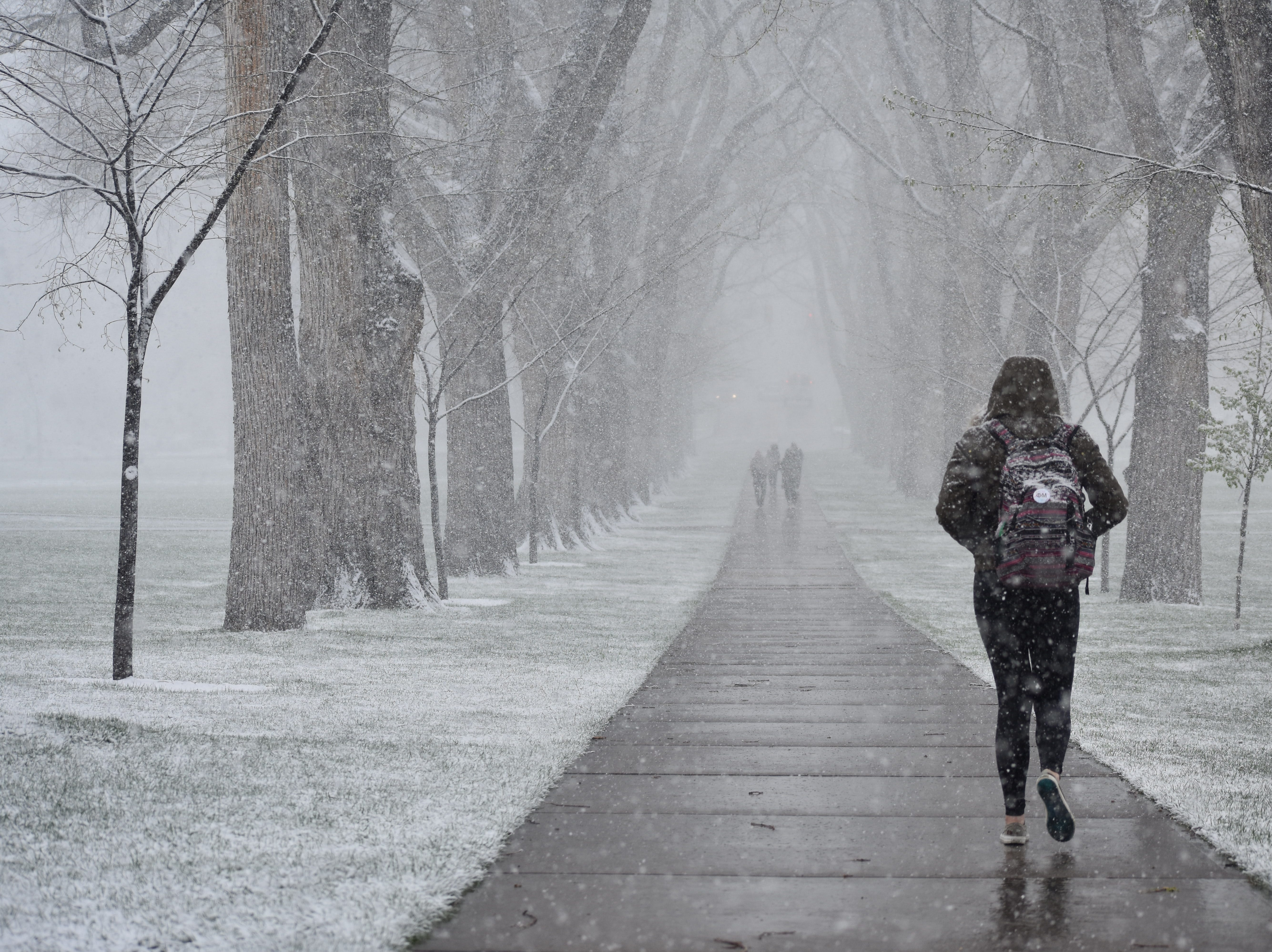 CSU's Oval during Monday's snowstorm.