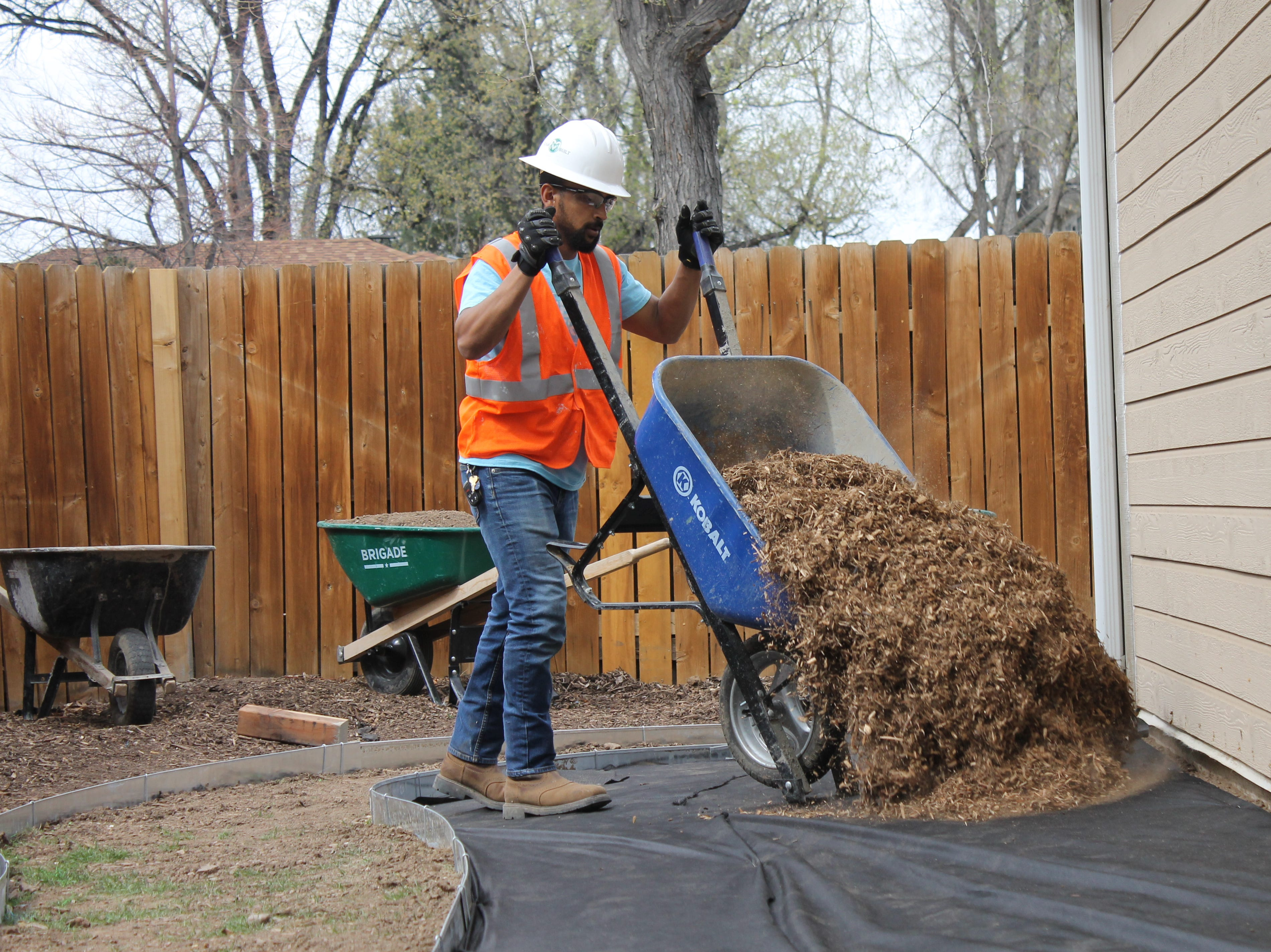 Colorado State University construction management student Saleh Bawareth dumps out a wheelbarrow full of mulch. Bawareth and a team of students from CSU's Construction Management Cares team work to make improvements for homeowners with disabilities.