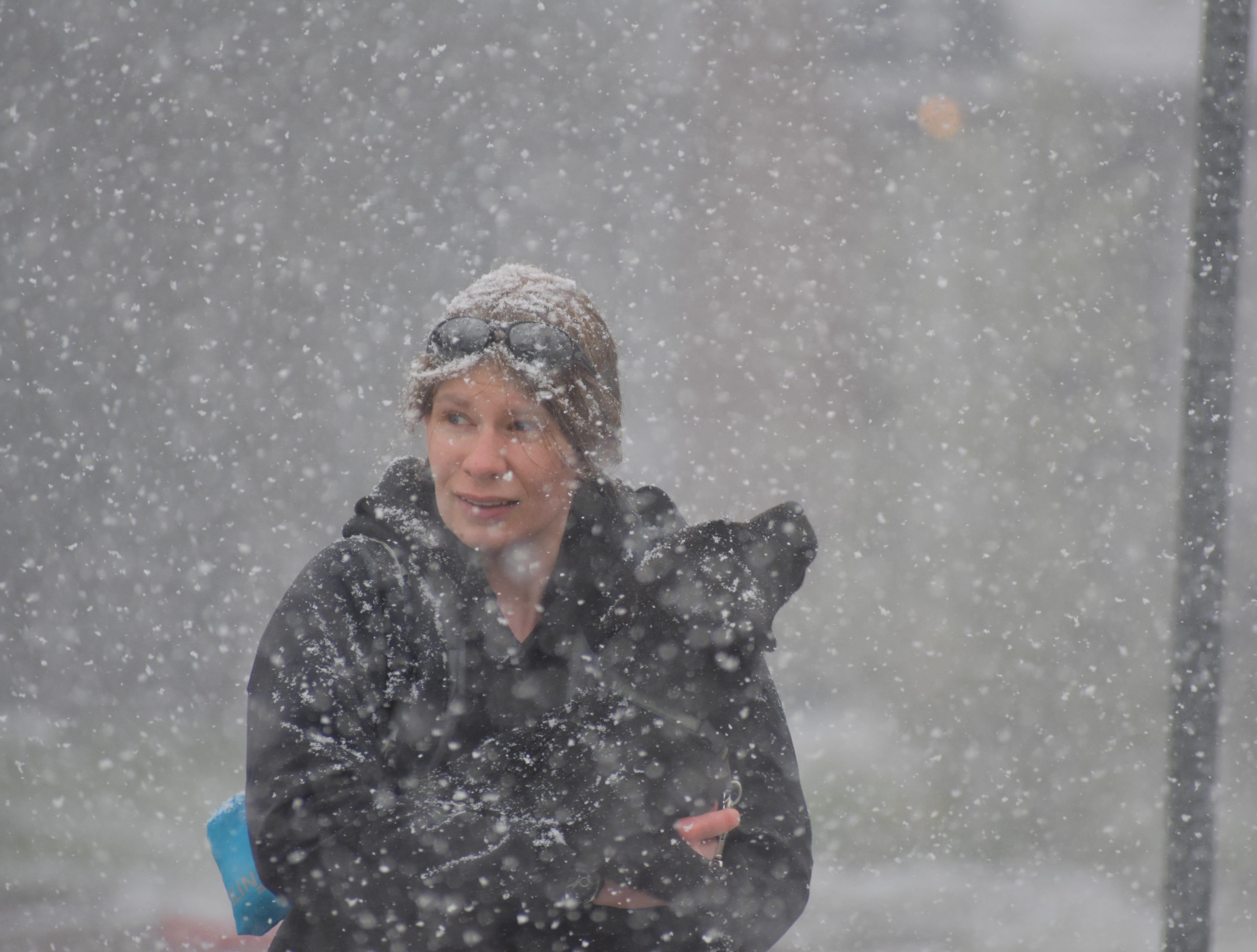 Scenes from Monday's snowstorm in Fort Collins.