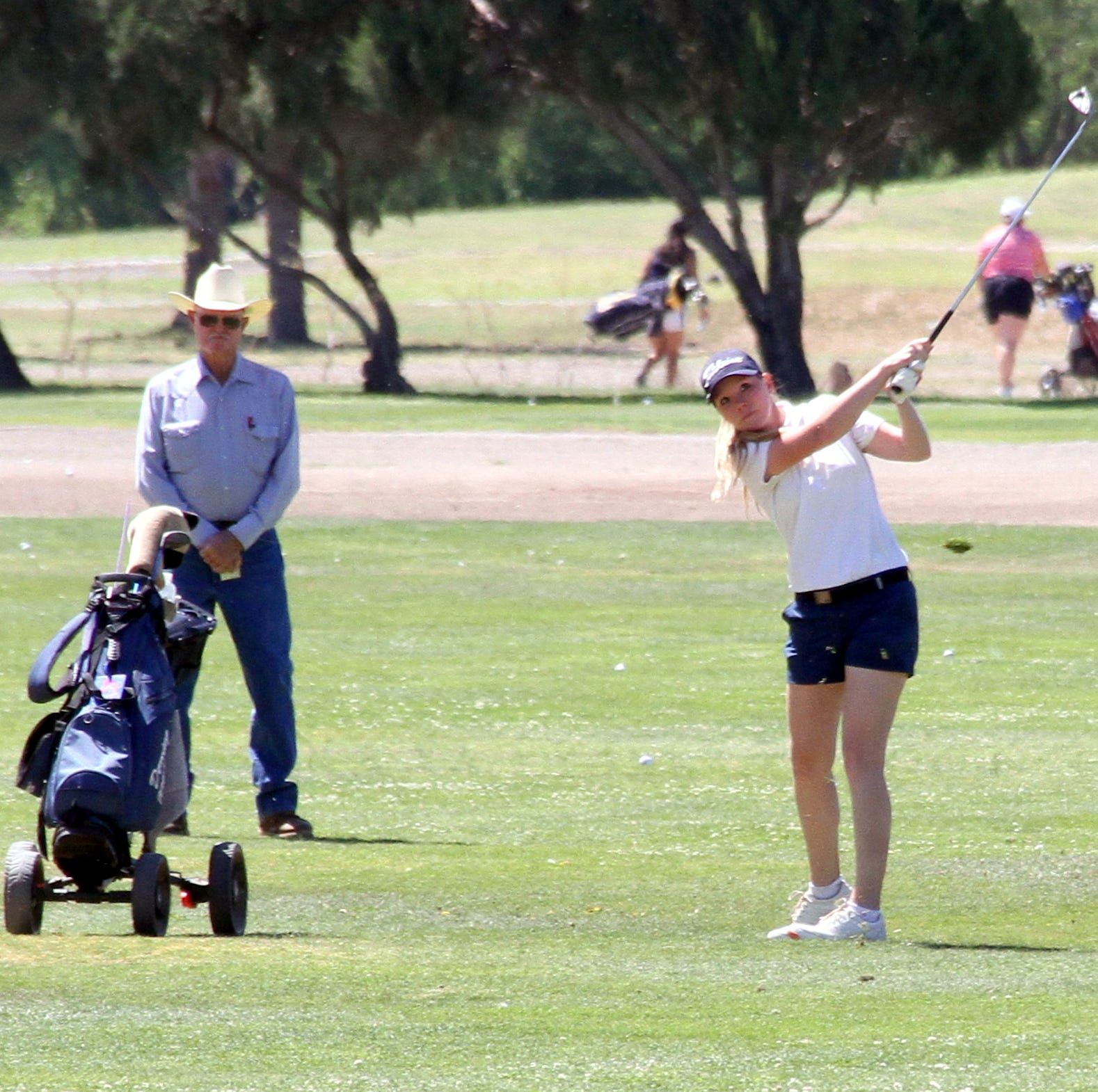 Deming High golfers sweep team titles on Rio Mimbres home course