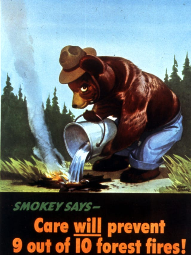 Smokey the Bears 75th birthday, US Forest Service message still heard