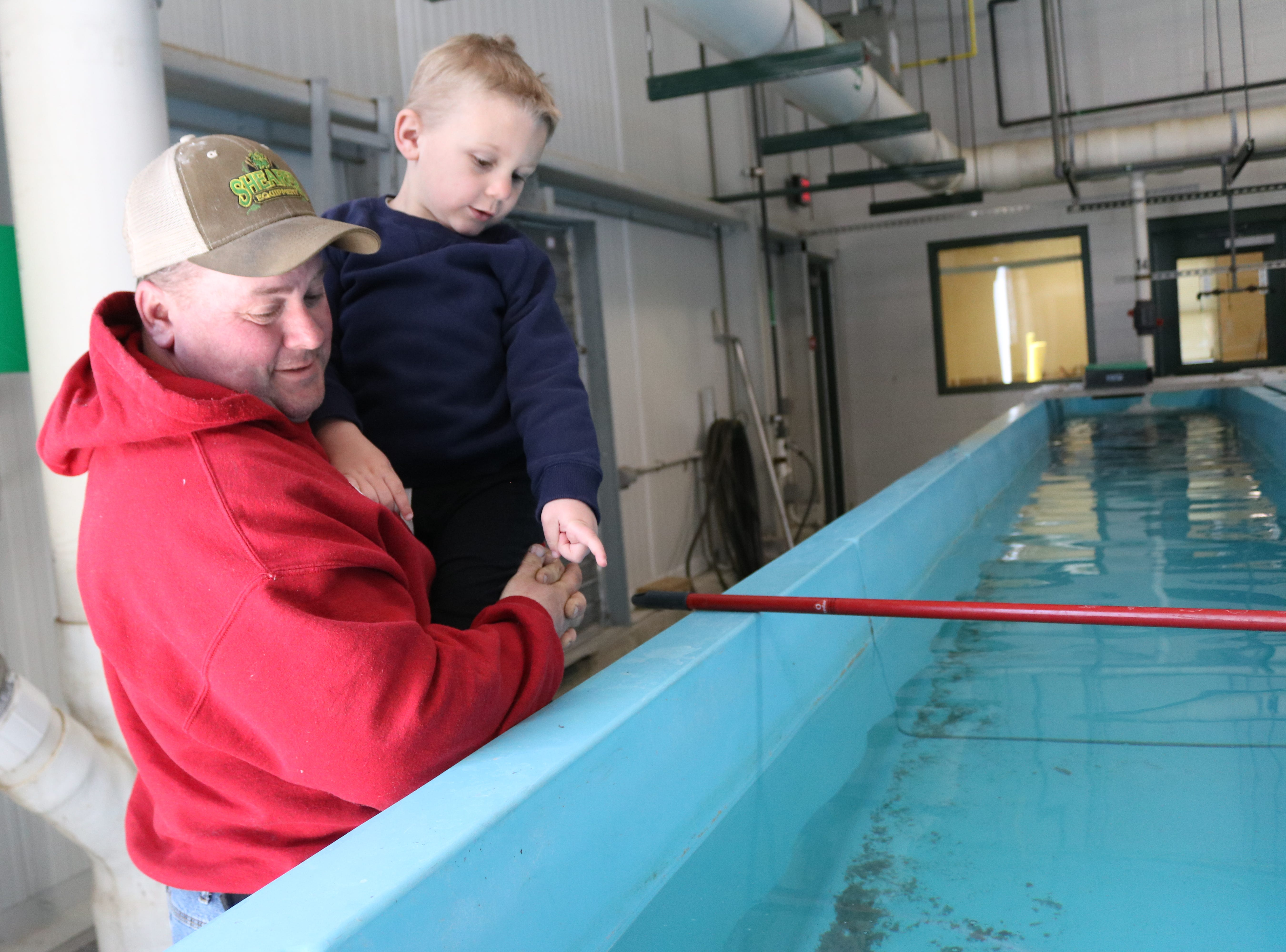 Paul Warner and his son, Noah, 4, check out young trout being raised at the Castalia State Fish Hatchery on Saturday.