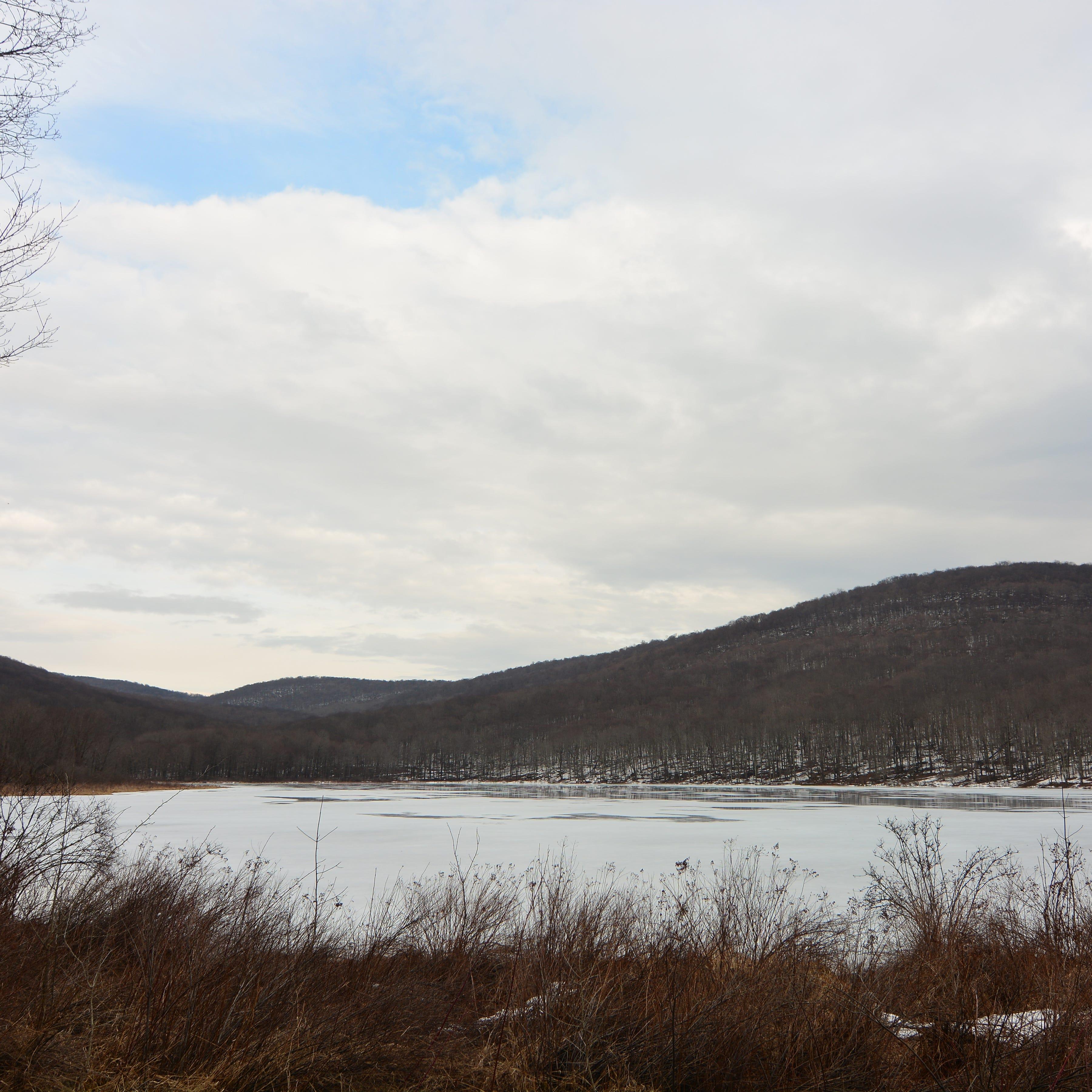 Easy hike along Alder Lake a pleasant surprise