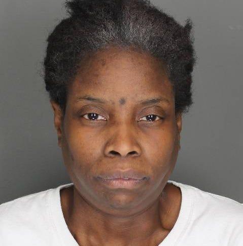 Poughkeepsie woman faces criminal mischief felony: police