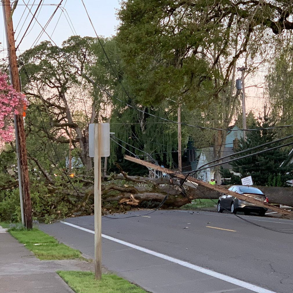 Fallen tree closes Center Street, knocks out power; North Salem classes canceled
