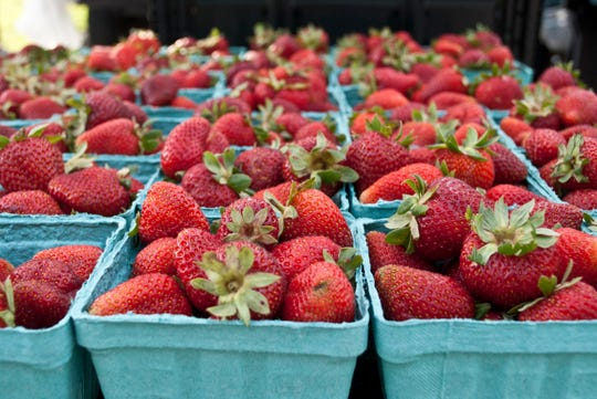 McConnell Farms will have rhubarb and strawberries available at farmers tailgate markets.