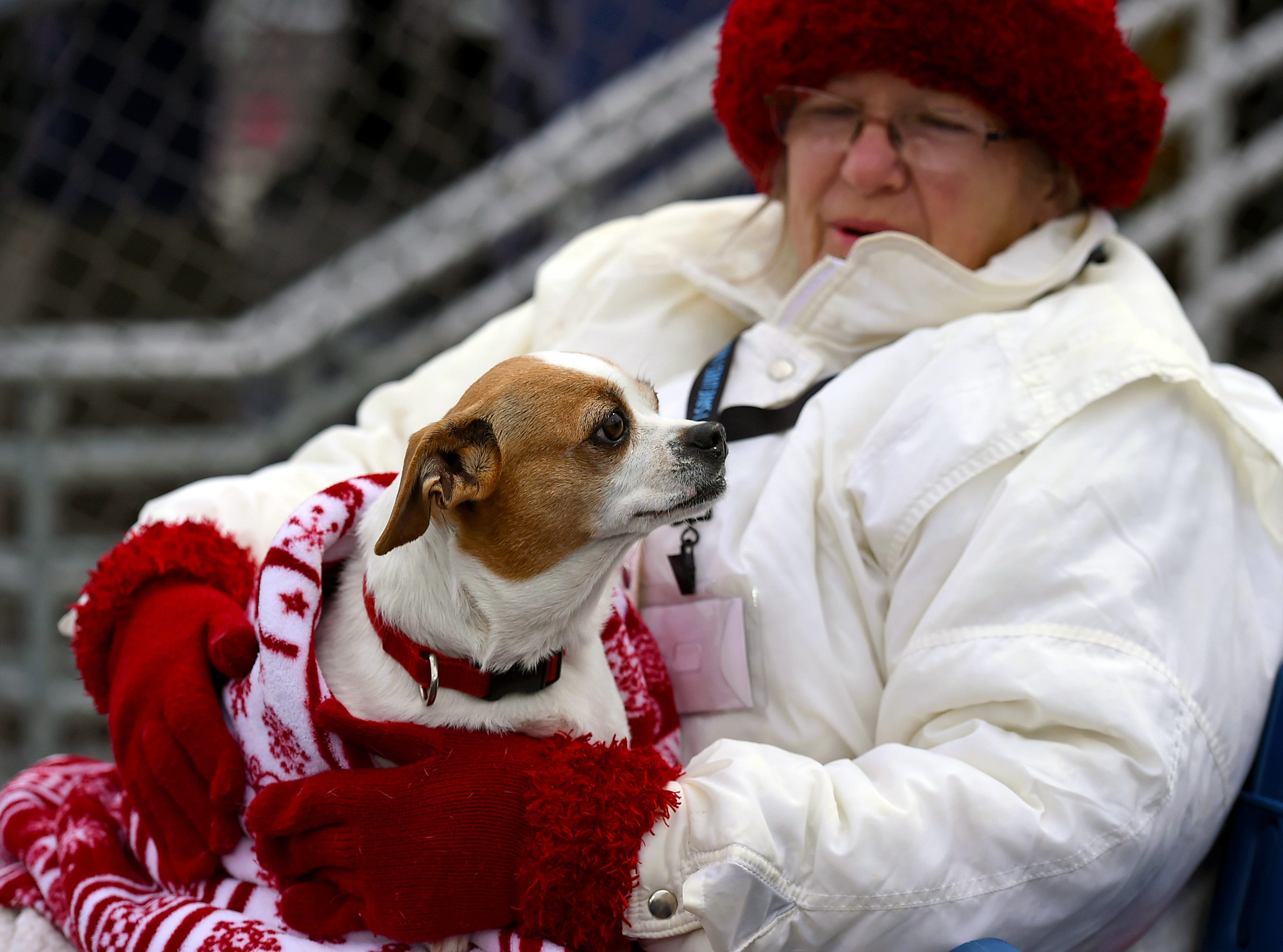 Marion Clonch, a volunteer with Animal Care Sanctuary, with her dog Augie during Mutt Monday at the Binghamton Rumble Ponies game NYSEG Stadium. April 29, 2019.