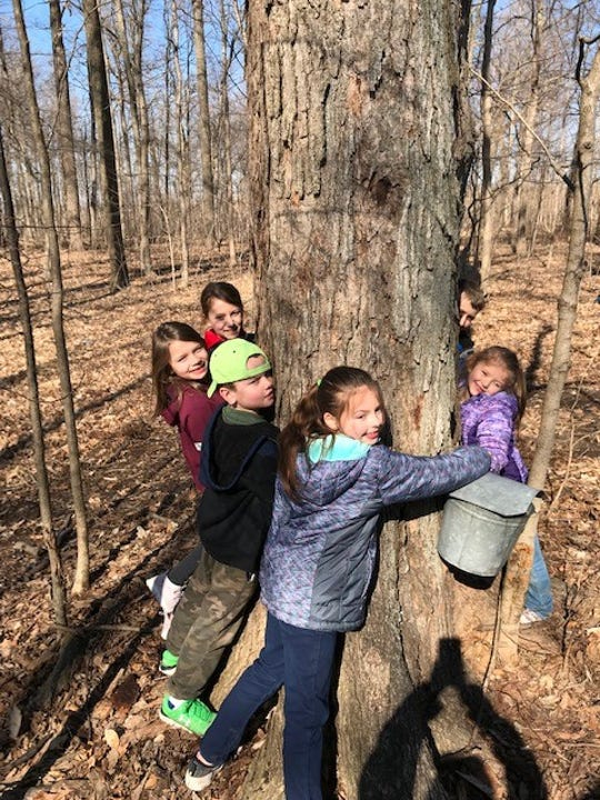 From left, Allie Bessinger, Lily Laipply, Logan Laipply, Brynn Crall, Bria Crall and Evan Bessinger — members of the Peas in a Pod junior gardening club — hug a tree as part of a tree-focused club meeting.