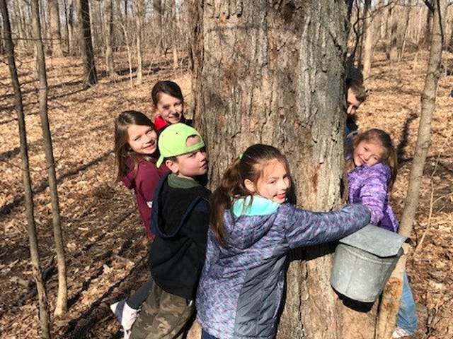 From left, Allie Bessinger, Lily Laipply, Logan Laipply, Brynn Crall, Bria Crall and Evan Bessinger— members of the Peas in a Pod junior gardening club— hug a tree as part of a tree-focused club meeting.
