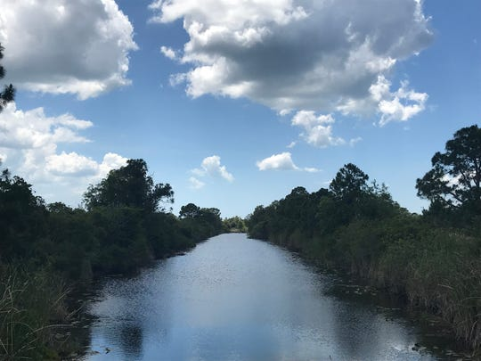 The Cassandra Canal in Cape Coral