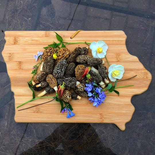 Tyler Gustafson, a Cedar Rapids resident gathered these flowers and morels in Johnson County.
