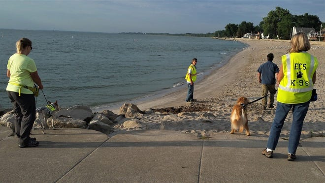 Crush (far left) and her handler, Aryn Hervel, teamed up with Kenna and her handler, Laura Symonds, as part of a 2015 project at Luna Pier. That work was part of the S.S. LaPointe Drain project on the shore of Lake Erie that was trying to determine a cause for the recent spate of algal blooms.