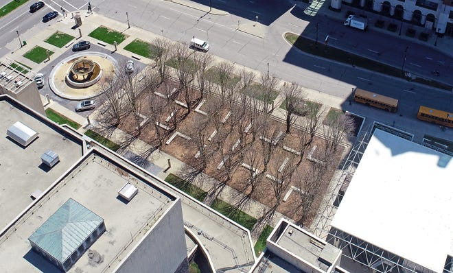 The grove of trees at the Marcus Center for the Performing Arts could be facing removal based on a Tuesday vote by the Common Council's Zoning, Neighborhoods and Development Committee.