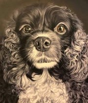 Kevin Campbell's DOG Portraits will be shown at the Brinkman Gallery.