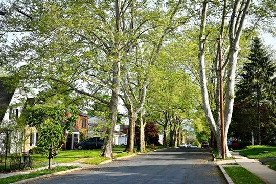 The 100 block of North Manheim Street in Springettsbury Township, Tuesday, April 30, 2019. Dawn J. Sagert photo