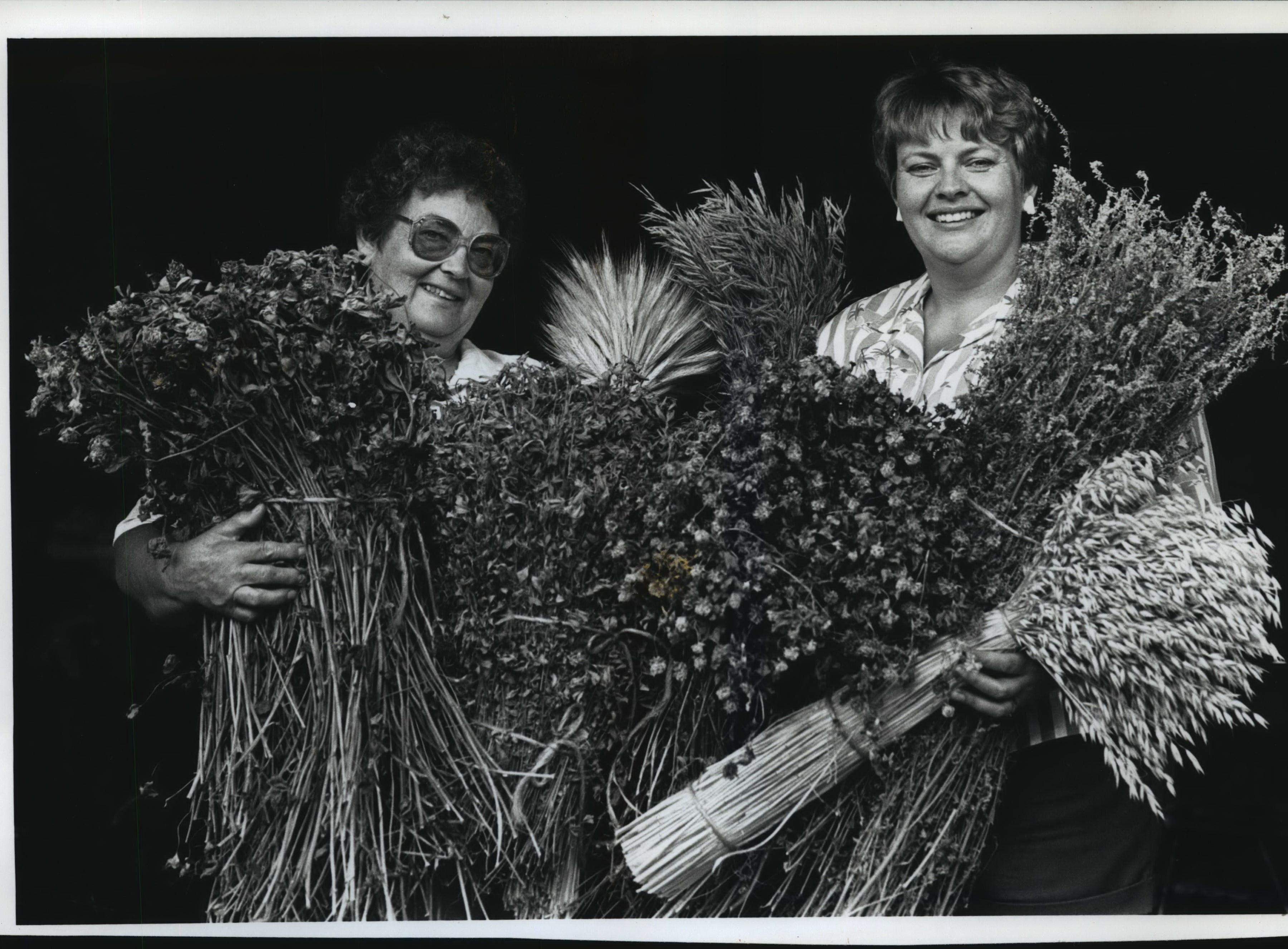 Evelyn Herther of Jackson and daughter Ruth Knetzger of Hubertus will enter scores of entries in the Washington County fair. Among them are dried plants that they bundle in bunches