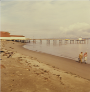 The shore near Hansville was once home to popular fishing resorts.