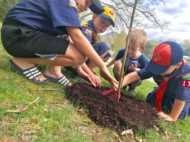 Planting a Silky Dogwood tree at Lake Tomahawk for Arbor Day was a fun community service for members of Cub Scout Pack 177: den leader Wyatt Putnam and his brother, Garrett Putnam at left; and at right, Gabriel and Jordan Sylvestre.