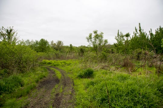 A trail along the Cramer Hill Nature Preserve Wednesday, May 1, 2019 in Camden, N.J.