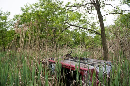 The remains of an abandoned vehicle inside the Cramer Hill Nature Preserve Wednesday, May 1, 2019 in Camden, N.J.