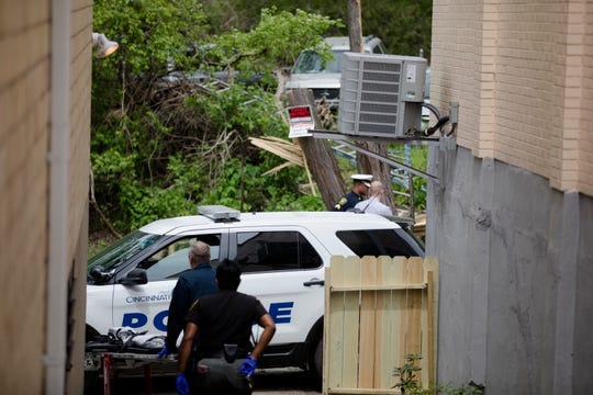 Police investigate after a tree fell on a man in East Price Hill.