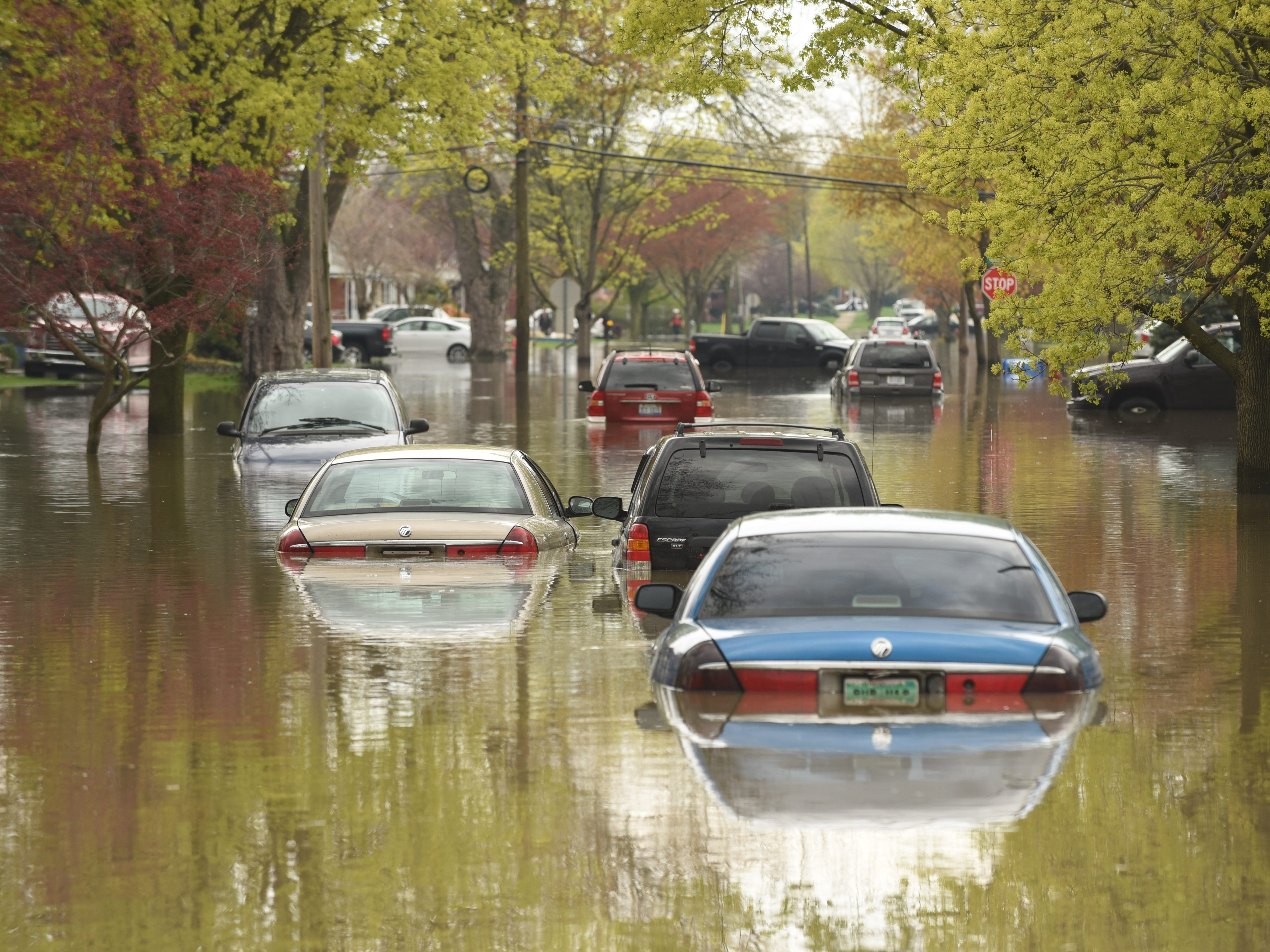 Submerged cars sit abandoned in the middle of Currier Street in Dearborn Heights.
