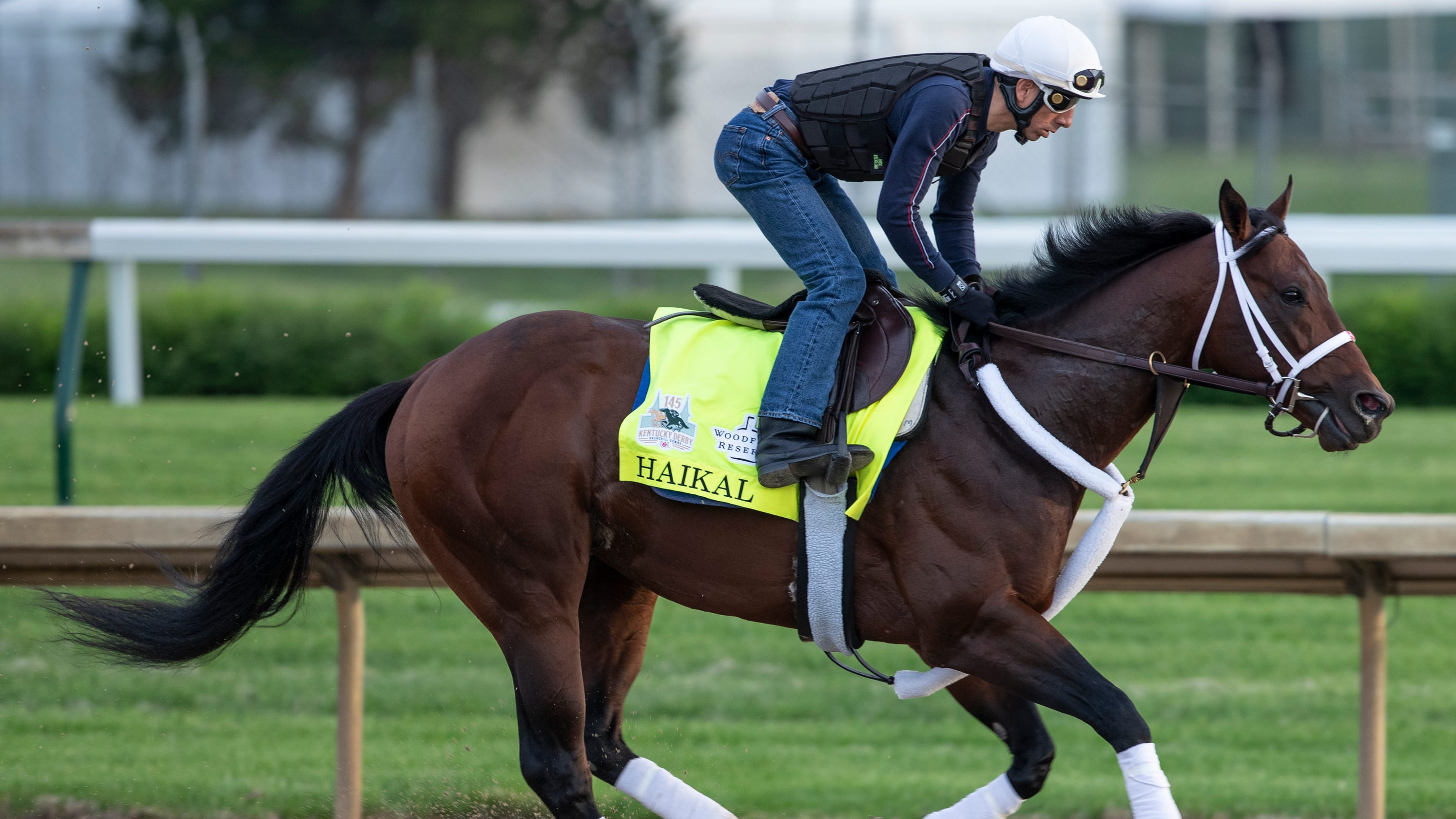 Kentucky Derby Contenders 2019: Haikal Scratched From Race