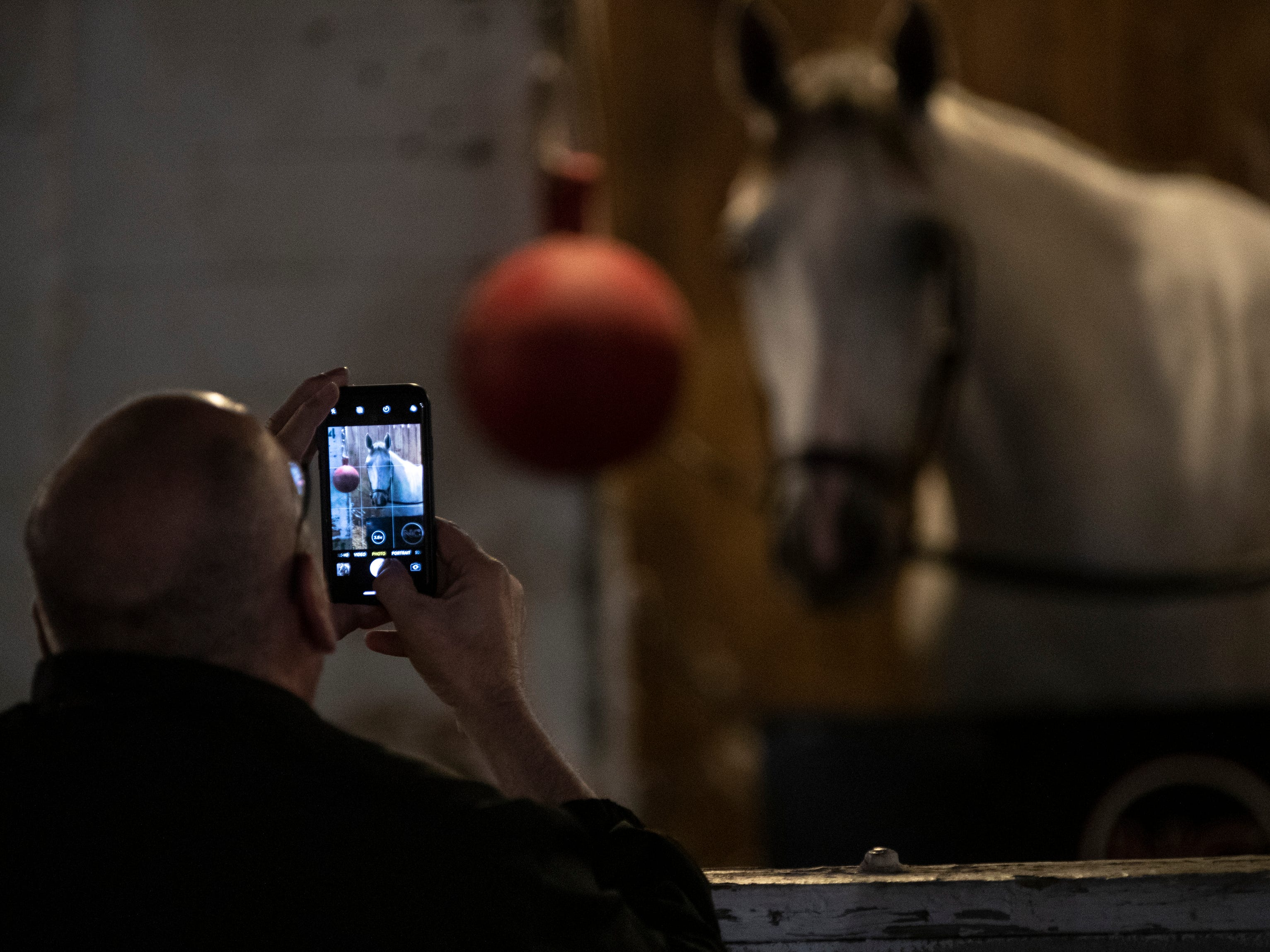 Daniel Young took a photo of. Horse in Brian Williamson stable at Churchill Downs. Young serves as a host for the track. May 1, 2019.