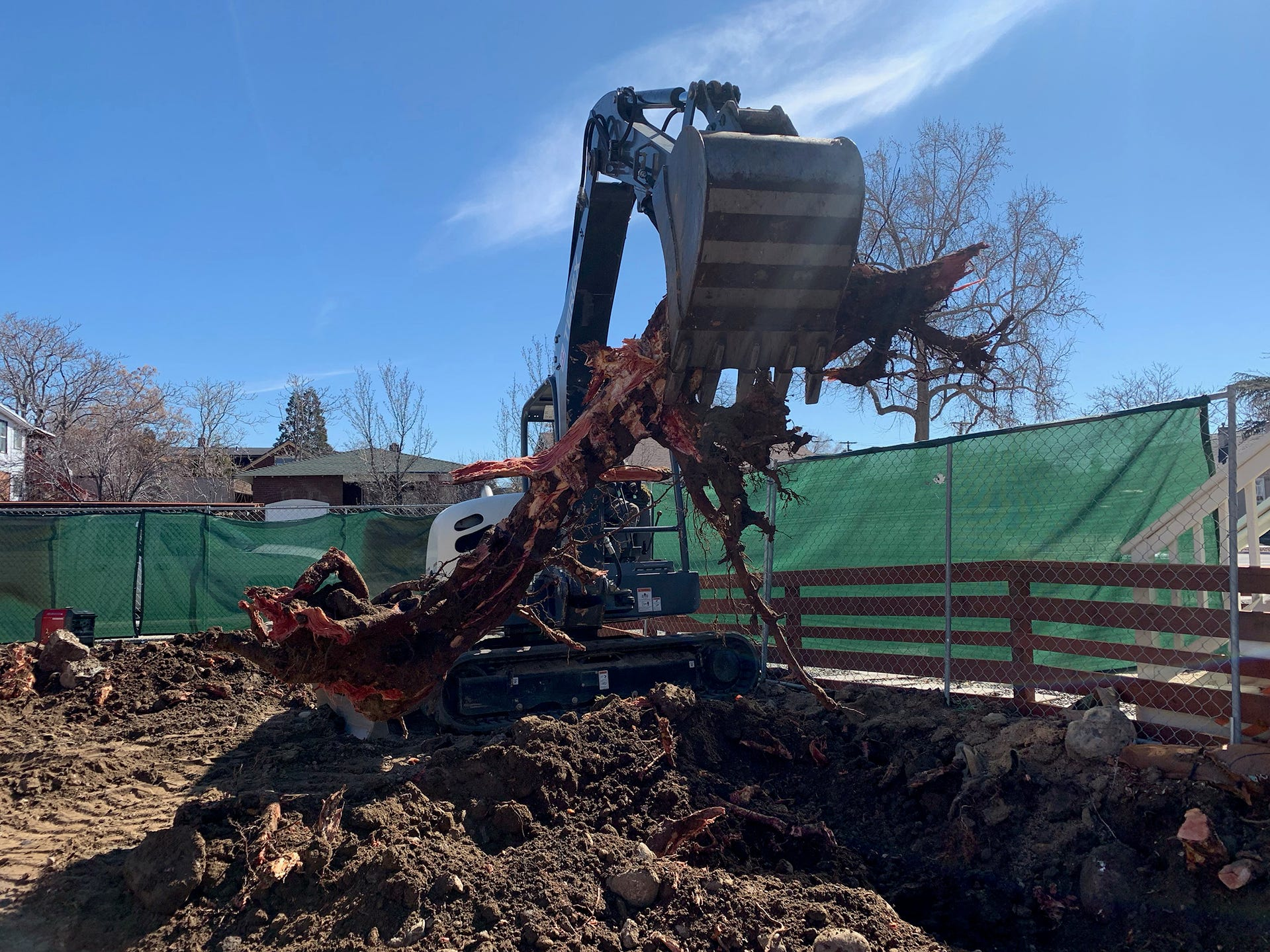 Tree roots are cleared at the site of a new shipping container apartment project at Reno's Midtown neighborhood.
