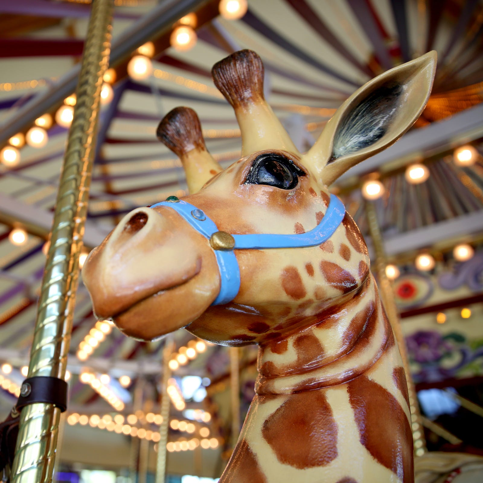 From a dragon to free cake, here's what's in store for Salem's Riverfront Carousel