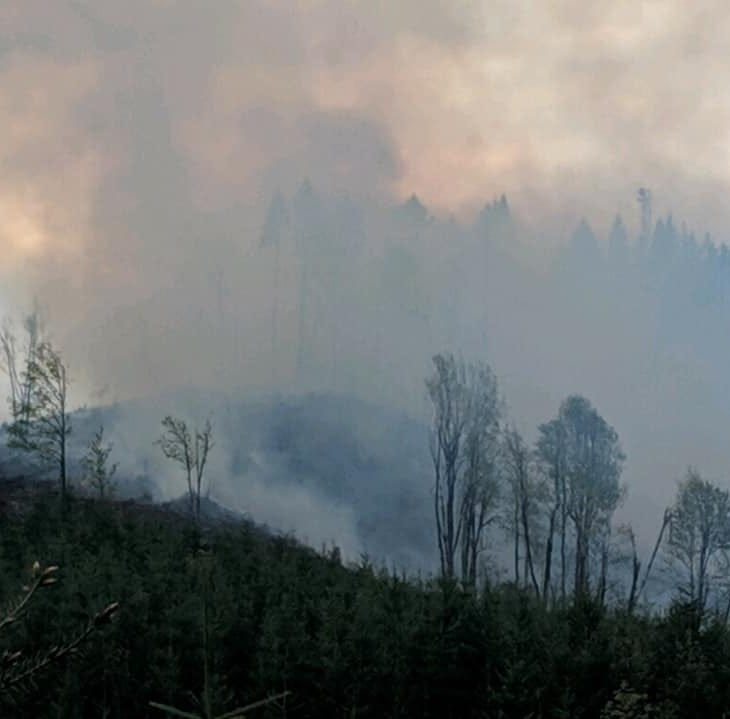 Crews battle wildland fire outside McMinnville, 25 acres burned