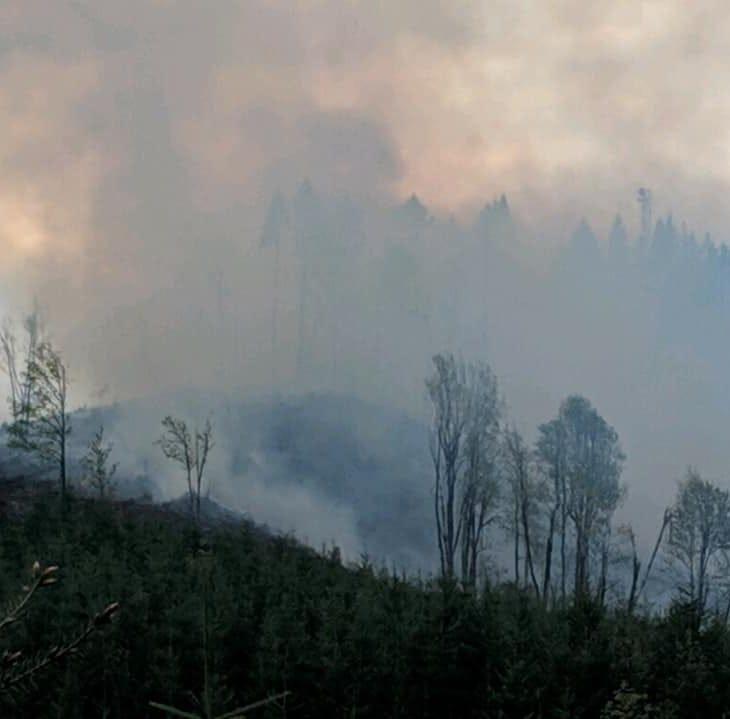 Crews battle wildland fire outside McMinnville, 25 acres burned