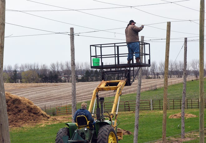 Sam Baker adjusts one of the cables at Herds to Hops Hop Farm on April 26, 2019.