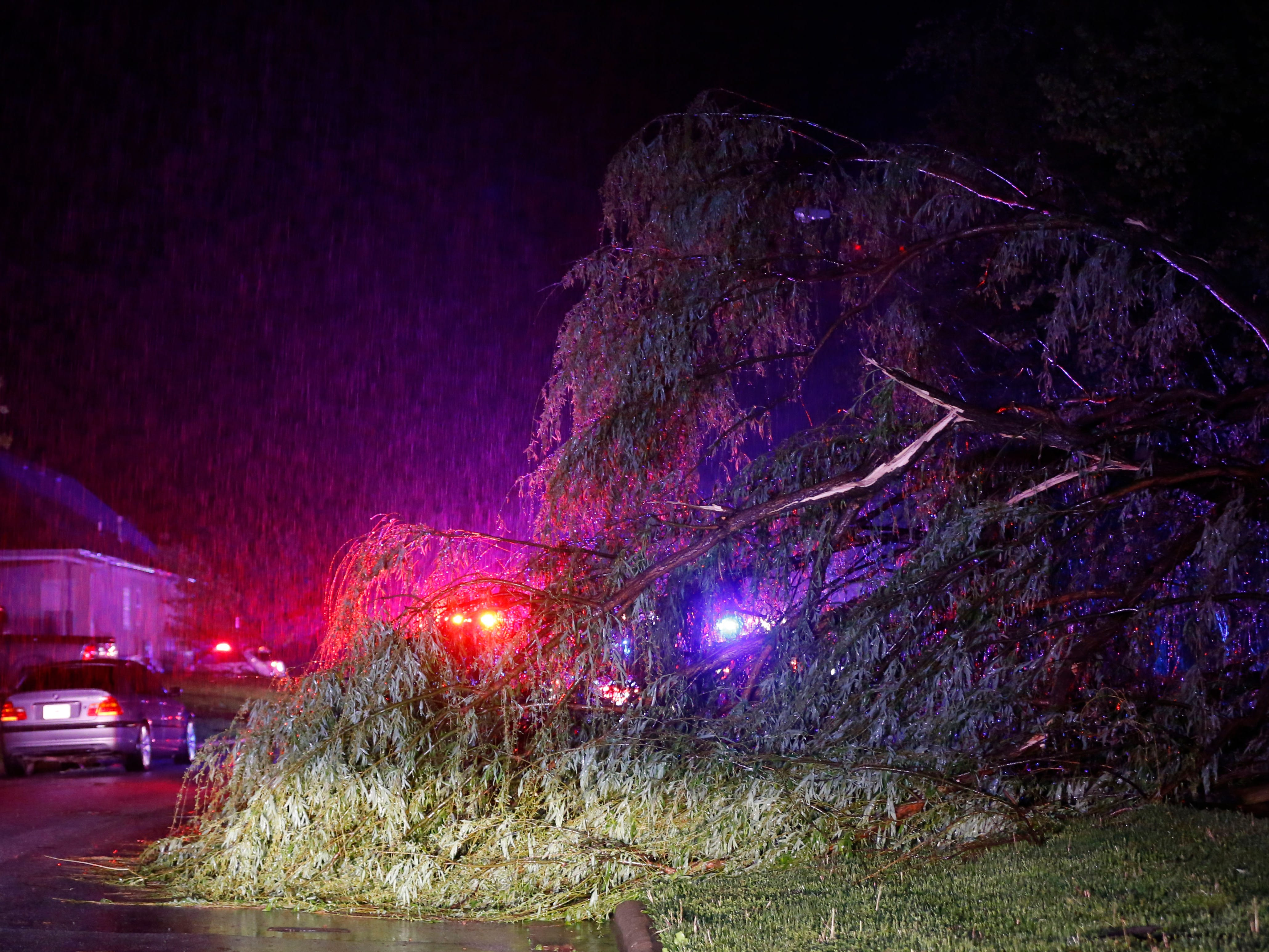 A downed tree in the Waterford neighborhood in Ozark on Tuesday, April 30, 2019.