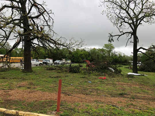 Large trees were downed Tuesday by the storm that hit near the Logan-Rogersville elementary school on Farm Road 164.