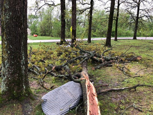 Trees were downed by the Tuesday storm near Logan-Rogersville's elementary school on Farm Road 164.