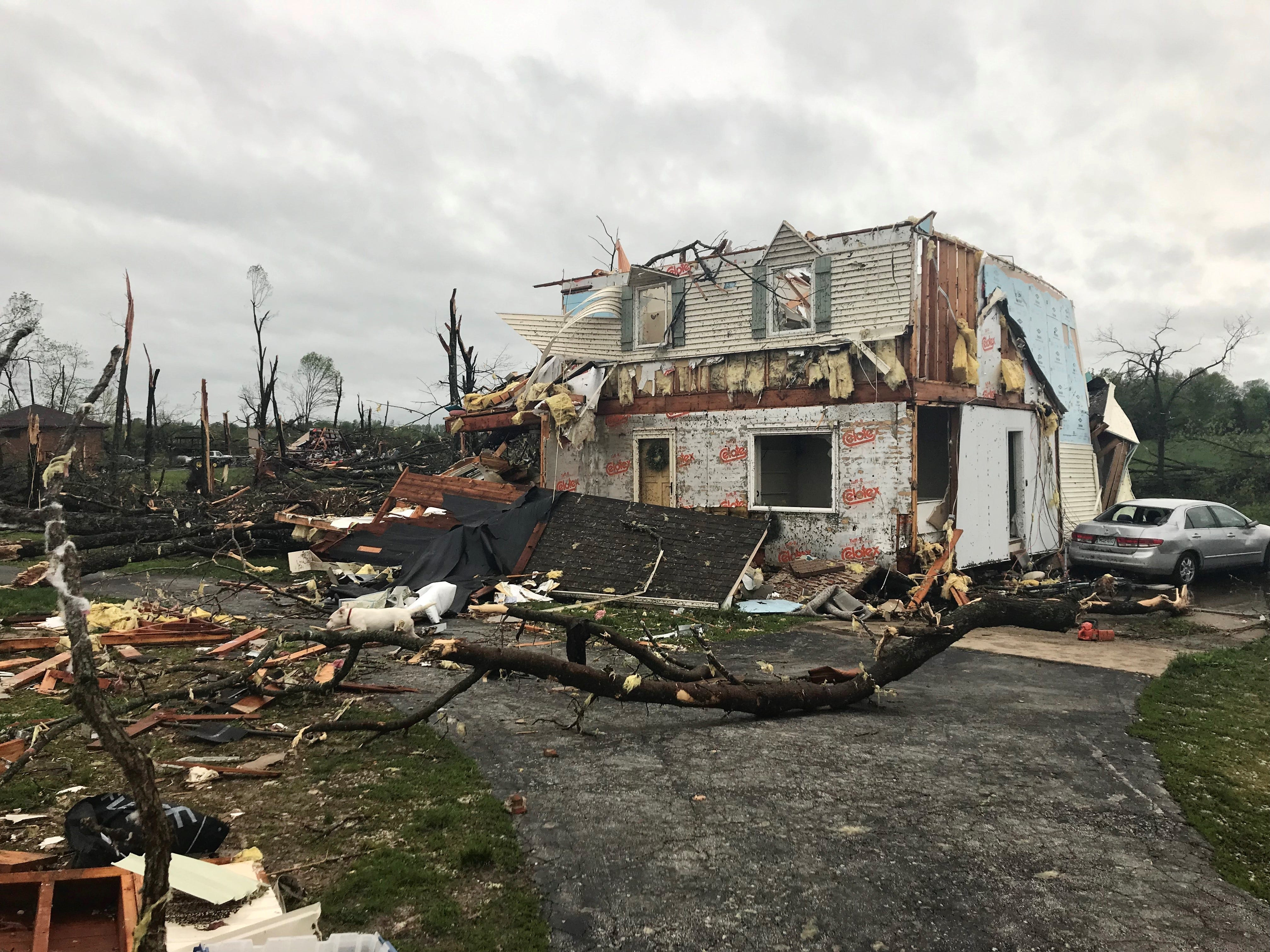Weather damage in Rogersville