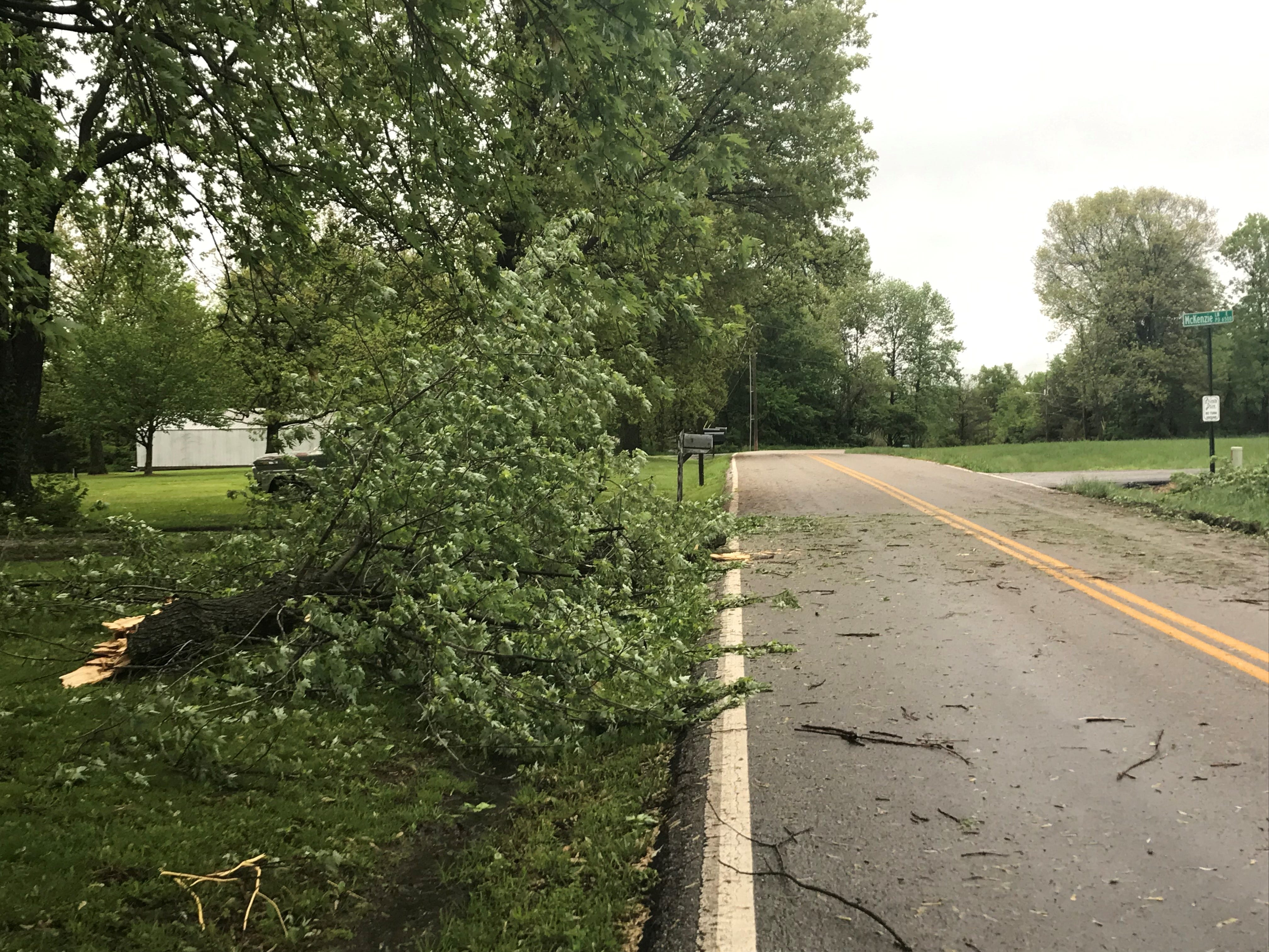 Storm damage in Rogersville on Wednesday, May 1, 2019.