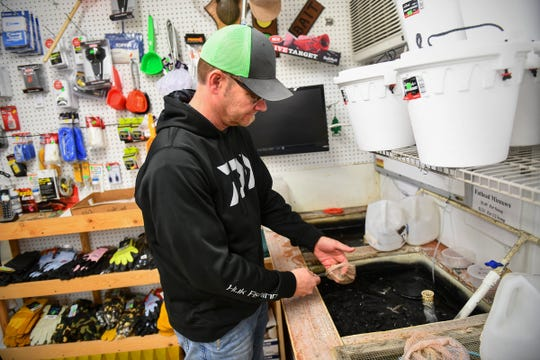 Stoplight Bait owner Aaron Kreller checks on live bait Tuesday, April 30, in St. Cloud.