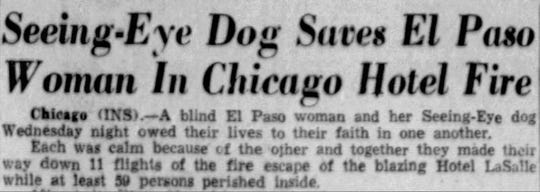 Seeing-Eye Dog Saves El Paso Woman In Chicago Hotel Fire