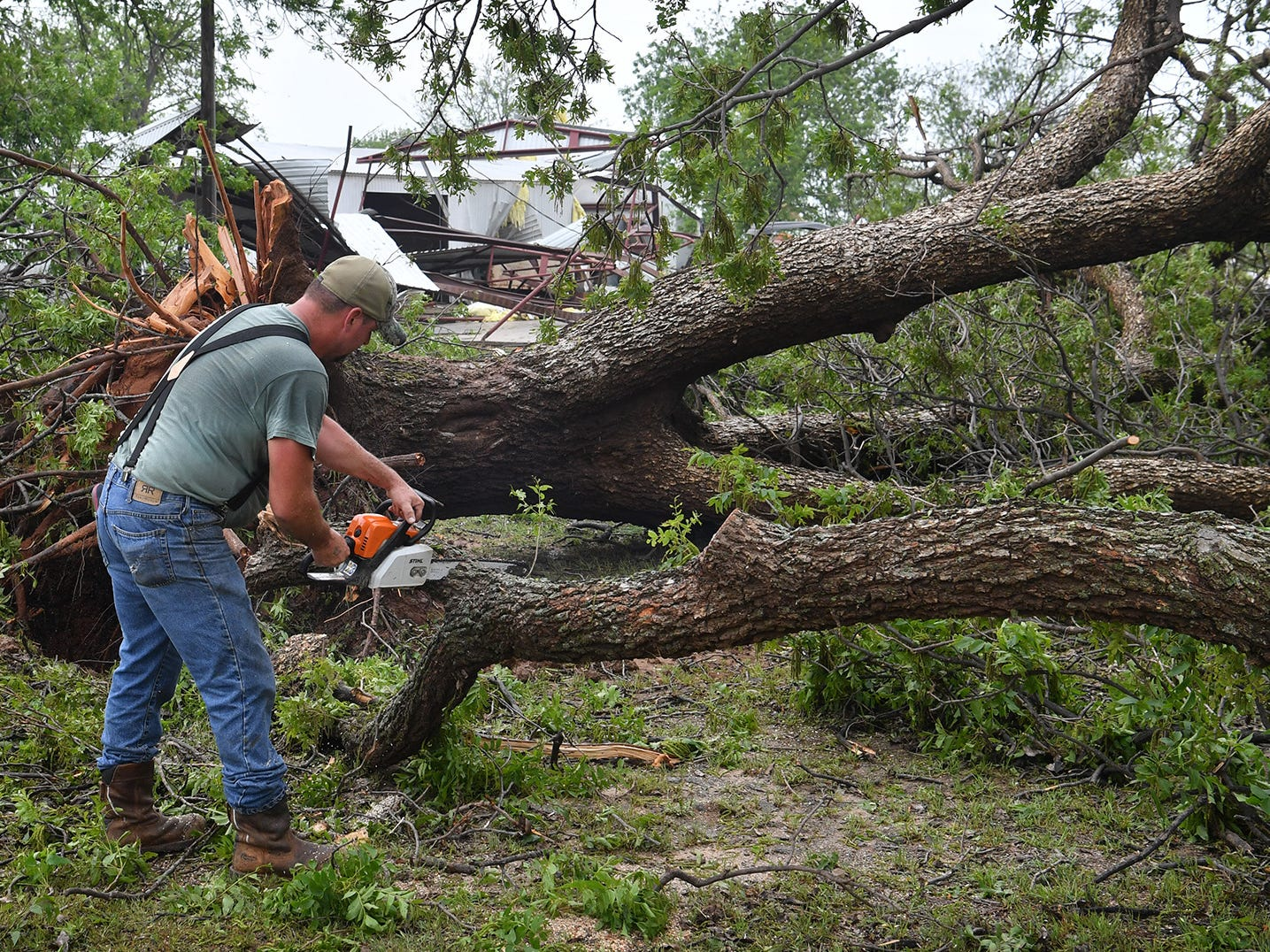 James Willis works on one of the hundreds of downed trees in the Charlie area after Tuesday evening's tornado ripped through the area damaging two orchards.