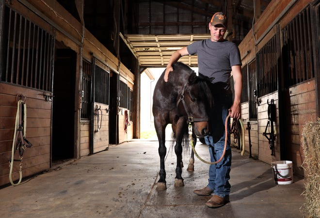 Adam Black visits with Leo, a Nokota that once roamed wild in the Dakotas. Black breaks and trains horses. He will compete in the Appalachian Trainer Face Off in August.