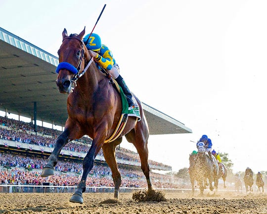 American Pharoah, with jockey Victor Espinoza, became the first Triple Crown winner in 37 years, with this win in the 2015 Belmont Stakes.