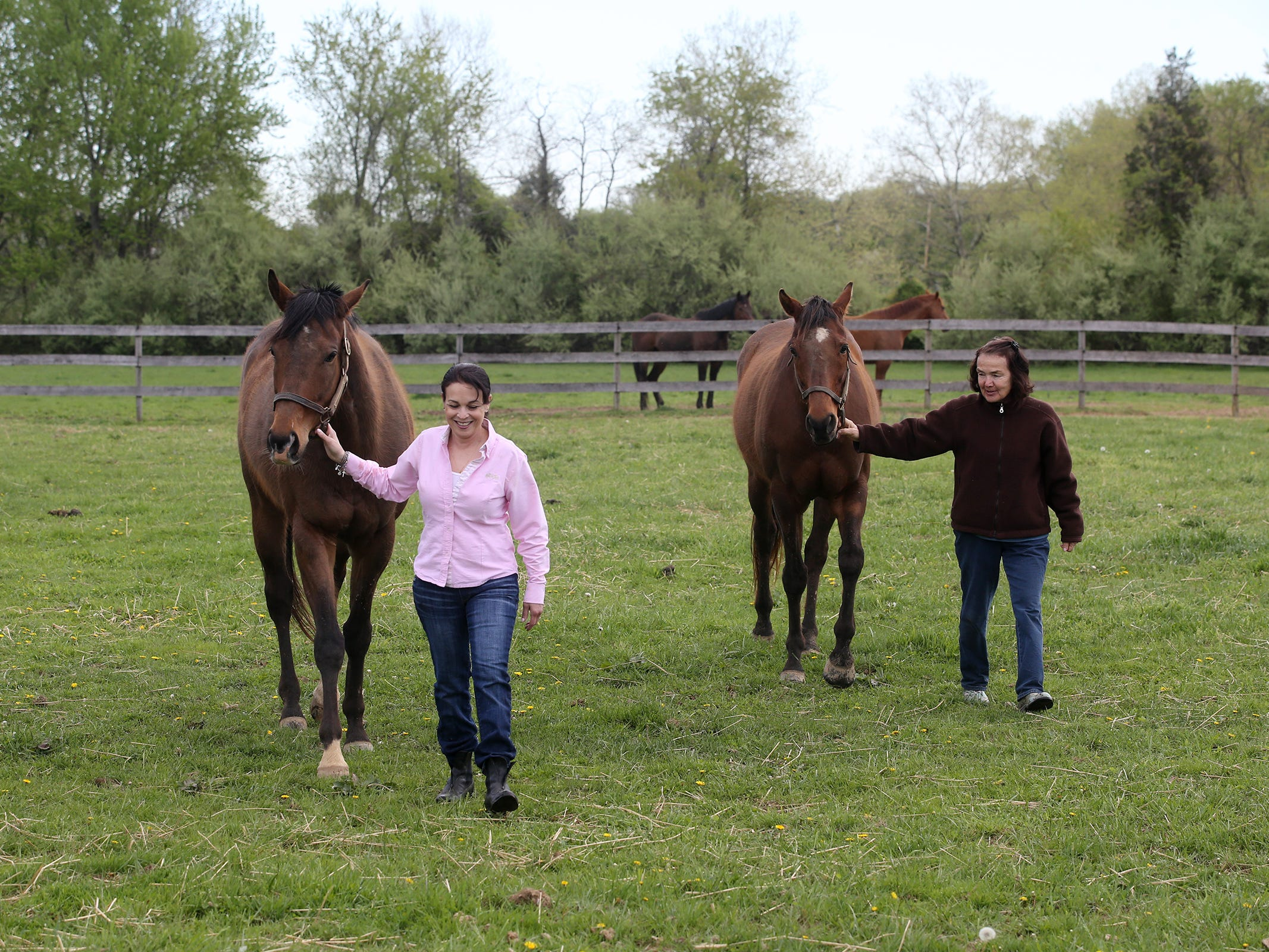 Laurie Condurso-Lane, founder and director of Second Call, a thoroughbred adoption and rescue organization that helps find homes for retired Monmouth Park race horses, and Eileen Munyak, owner of Hill Haven Farm, walk Jazz Man and Livin Large, two retired thoroughbreds rescued by Second Call and are being cared for by Eileen Munyak, at Hill Haven Farm, in Millstone Twp., NJ Thursday, April 25, 2019.